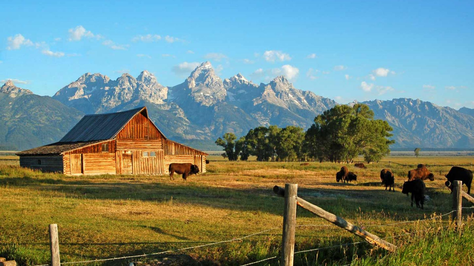 things to do in jackson hole jackson hole central