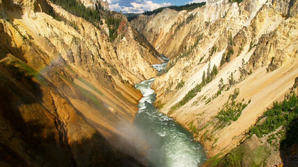 Yellowstone & Grand Teton National Parks Wildlife Package