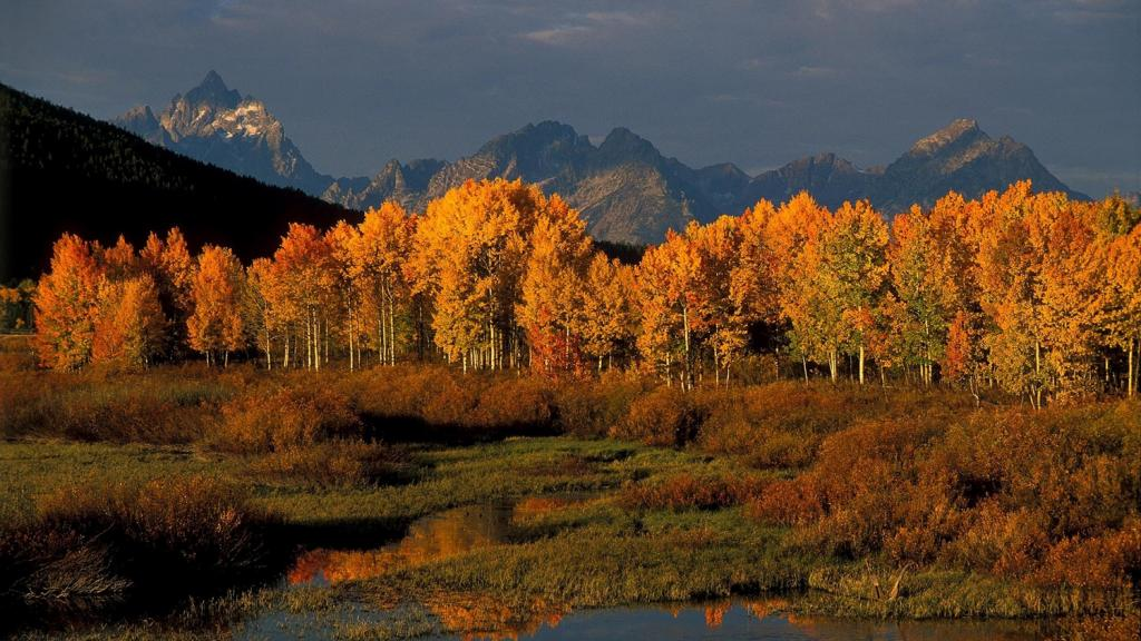 5 night luxury adventure escape jackson hole wy central for Jackson hole summer vacation