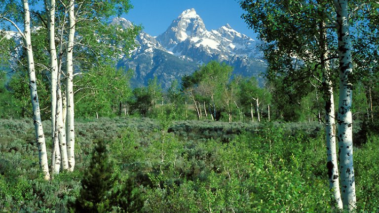 Spring in Jackson Hole: 5 Things to Do